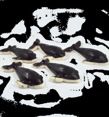 ballena-orca002